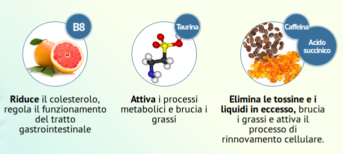 ecoslim ingredienti
