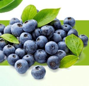 eco slim blueberry
