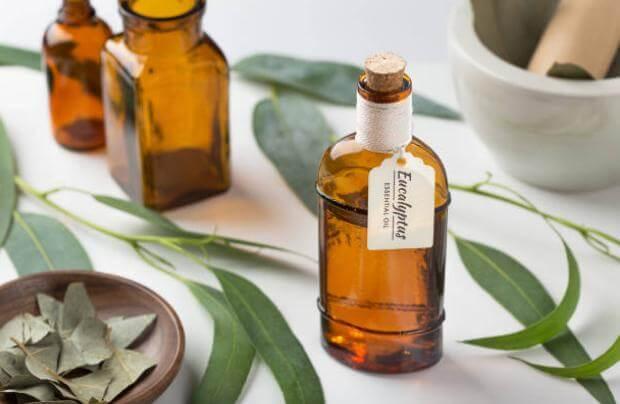ingredienti, composizione e formula di gel - eucalyptus