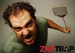 ZapTrap: la trappola per insetti sicura ed efficace!