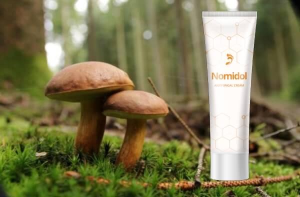 Nomidol, funghi