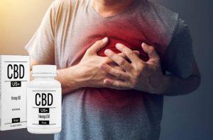 CBDus +: le capsule organiche con estratto di semi di canapa per tonificare, equilibrare e armonizzare l'organismo