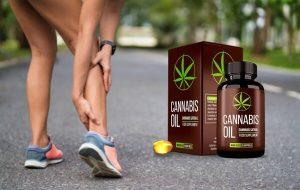 Cannabis Oil – Rimedio naturale per articolazioni sane e cartilagine!