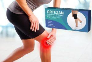 Ortezan Recensione – Un tutore magnetico per un stile di vita quotidiano più attivo!