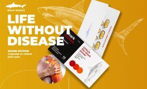 Shark Motion – Recensione capsule naturali per la salute delle articolazioni. Opinioni dai forum, sito ufficiale e prezzo in Italia